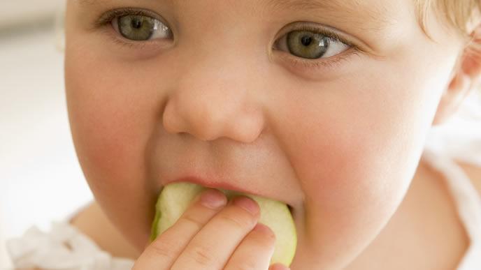 大好きなパンを食べる赤ちゃん