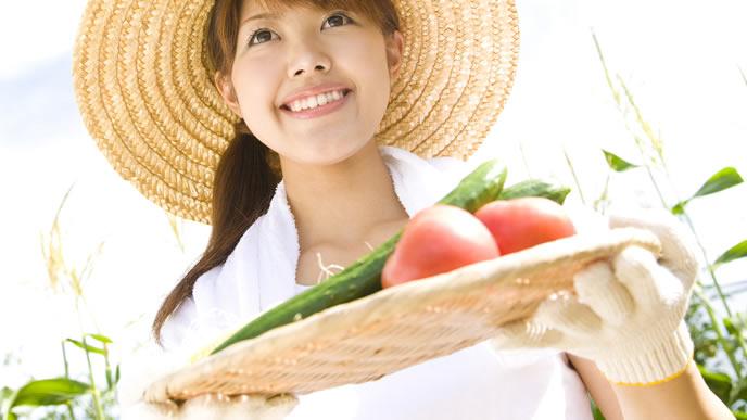 身体を温めてくれる野菜