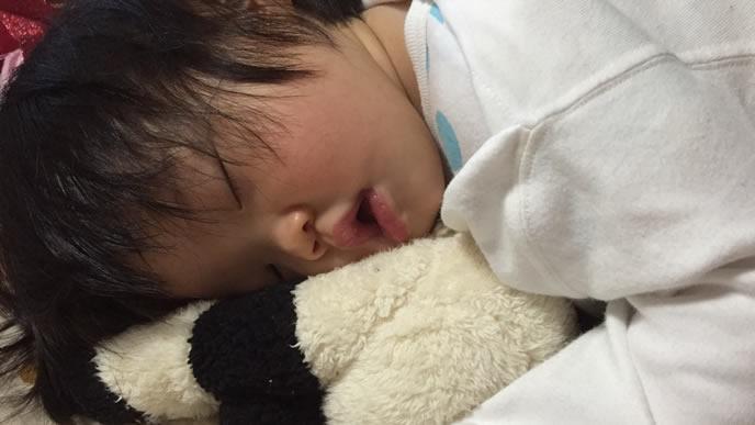 お気に入りのぬいぐるみを枕にして寝る赤ちゃん