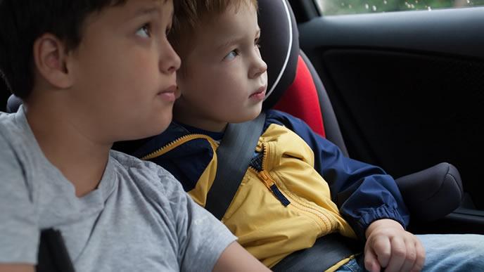 チャイルドシートでドライブを楽しむ兄弟