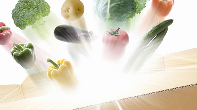 宅配のダンボールから飛び出る野菜