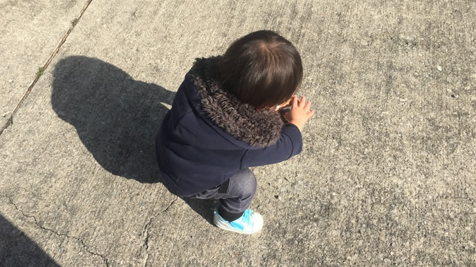石ころを拾う活発な赤ちゃん