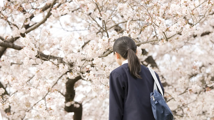 中学校に進学した桜の名前が付く女の子
