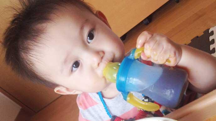 お茶を飲んでる男の子の赤ちゃん