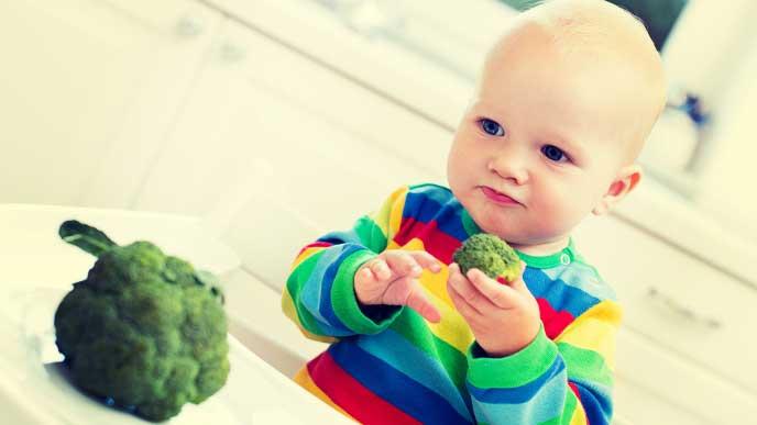 ブロッコリーのサラダを食べようとしてる赤ちゃん