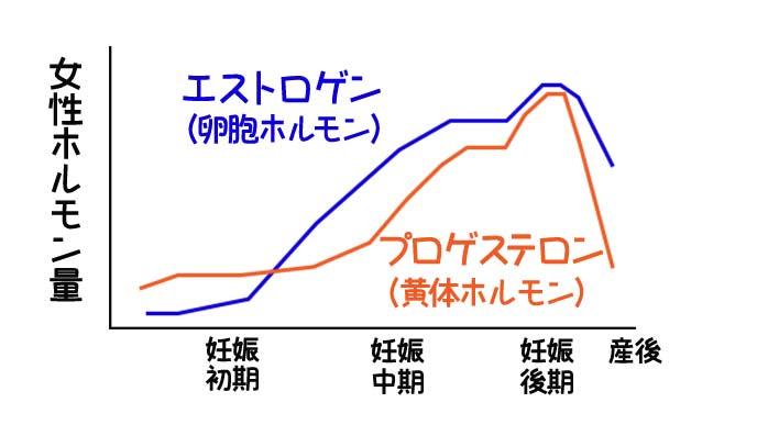 女性ホルモンの妊娠中の変化グラフ