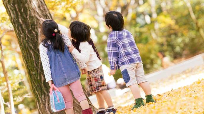 公園で木を見てる3姉弟
