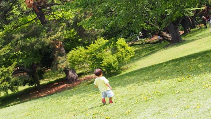 公園で森を見てる10ヶ月の赤ちゃん