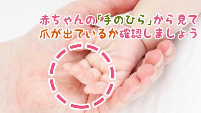 母親の手の上に乗った赤ちゃんの手のひら