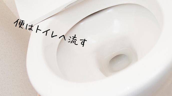 水洗トイレの便器