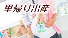 里帰り出産の手続きはパパ大活躍!必要書類や期限を解説