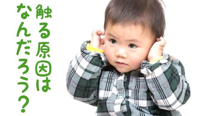 両耳を触る赤ちゃん