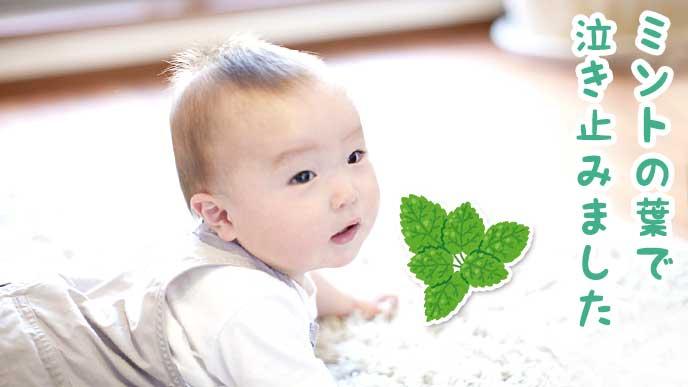 ミントの葉っぱのイラストとハイハイする赤ちゃん