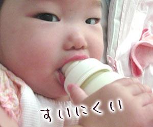 哺乳瓶を咥える赤ちゃん