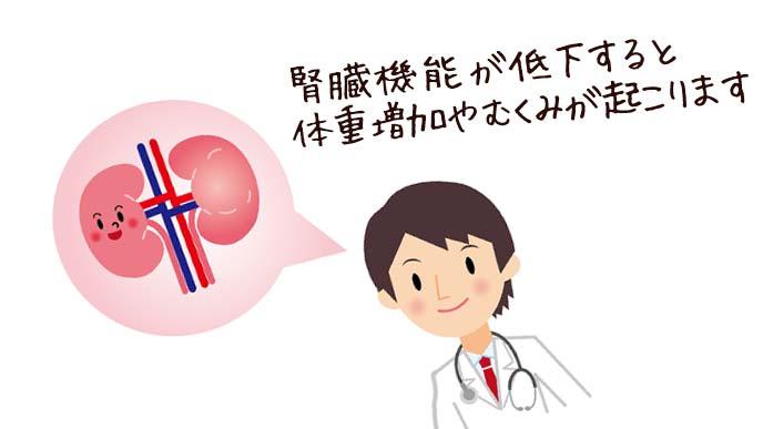 腎臓機能の低下を説明する医師