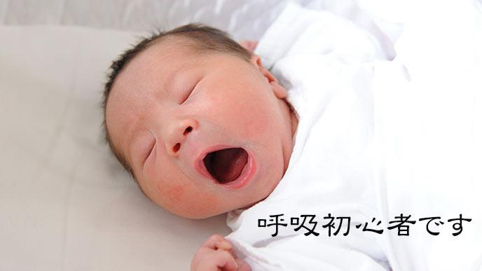 欠伸する新生児