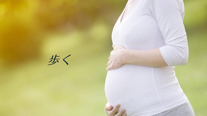 公園を散歩する妊婦