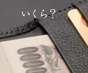 財布に入った札