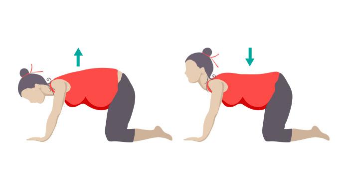 妊娠体操5
