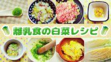 離乳食で白菜は取り分けしやすい優秀食材!段階別レシピ