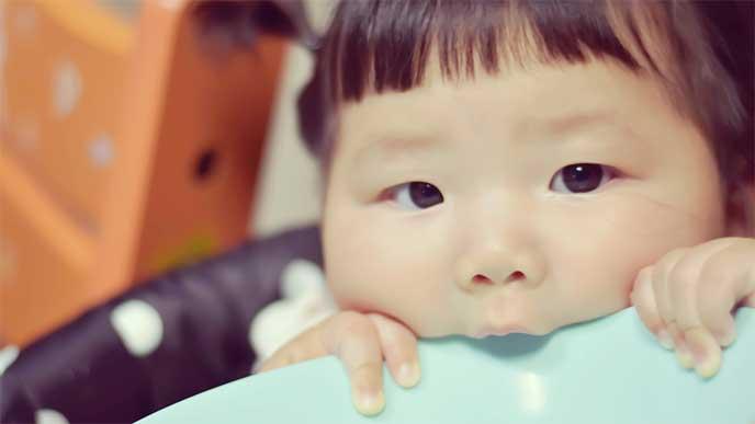 離乳食を食べ終わってお皿にかじりついてる女の子