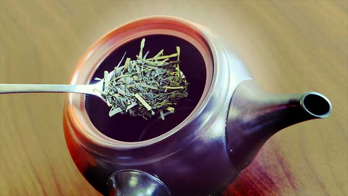 急須に緑茶葉を入れる人