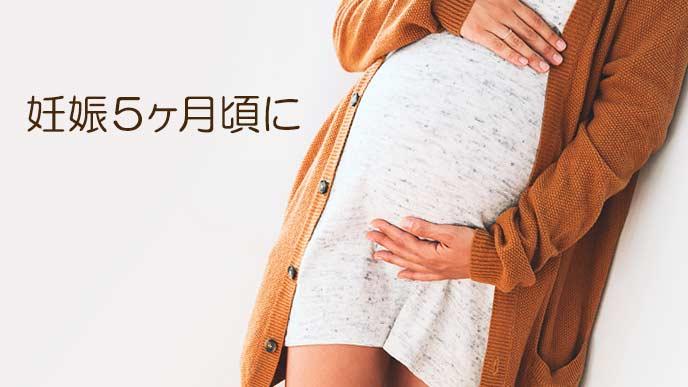 妊娠中期の妊婦