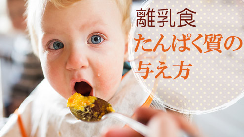 離乳食はたんぱく質と上手に付き合う!食材別ポイントは?