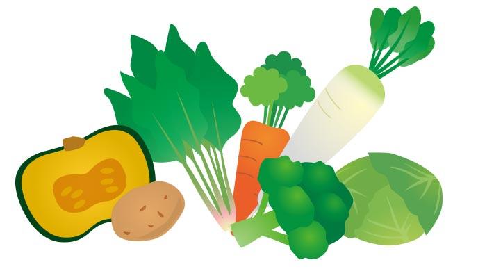 初期から食べられる野菜