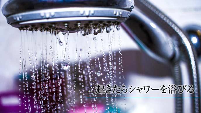 シャワーからでてくるお湯