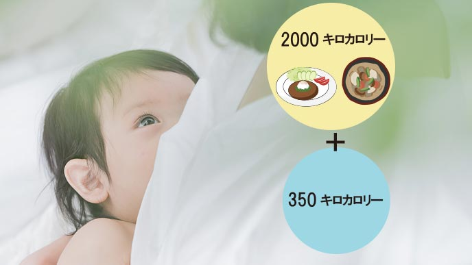 母乳育児の女性のカロリーの総量