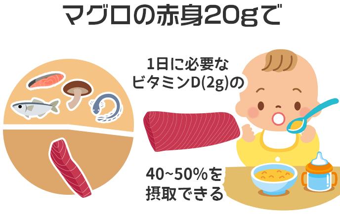マグロの赤身20gで1日に必要なビタミンD(2g)の40~50%を摂取できる