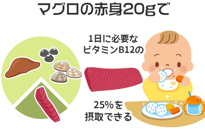 マグロの赤身20gで1日に必要なビタミンB12の25%を摂取できる