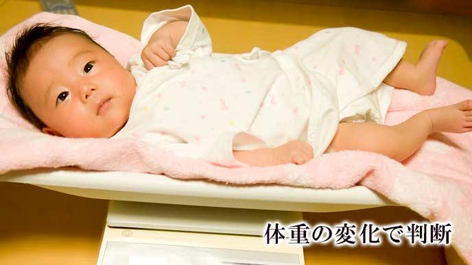 体重を計る赤ちゃん