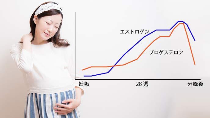 妊娠中のホルモン量の変化