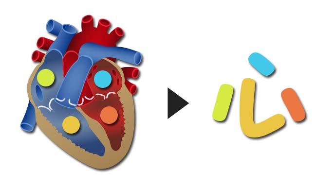 心臓と心という文字の関係のイラスト